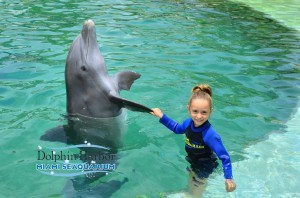 Isa and dolphin