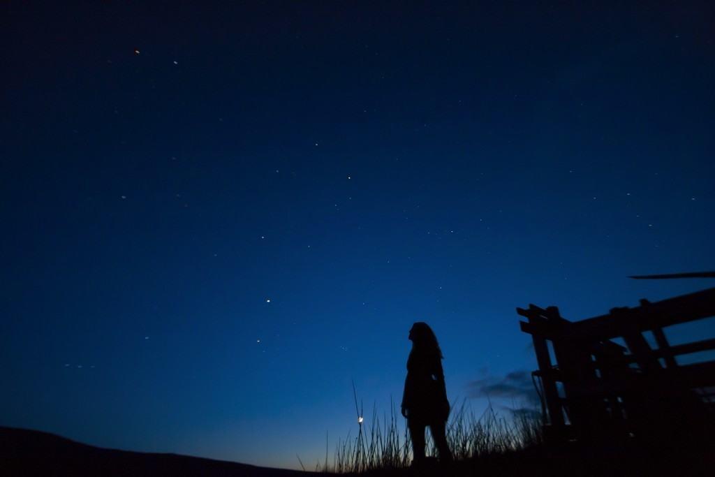 Stargazing in South Florida